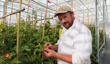 Freek Baars; Aardappelveredeling op de ErfGoedVloer