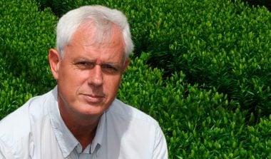Jan de Wit: Lelies op een berijdbare eb- en vloedvloer